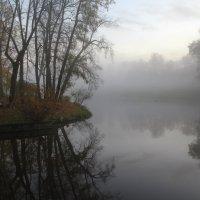 Туман в Павловске :: skijumper Иванов