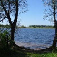 Голубая Озерна :: Ирина - IrVik