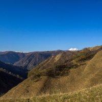 """вид на Эльбрус из """"Долины Кавказа"""" IMG_3844 :: Олег Петрушин"""