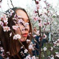 Цветочный сад :: Таня