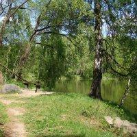 Весной у озера :: Татьяна Георгиевна
