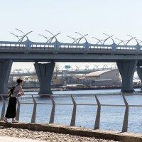 Мосты, эстакады :: VL