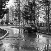 дождливое :: cfysx
