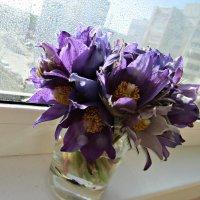 Весенний букет :: наталия