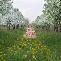 На встречу к весне :: Марина Климович