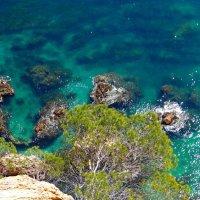 Море в Коста Браве :: Лариса