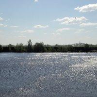 Ракиты, наклонённые к воде, свою листву купают в серебре. :: Ольга Кривых