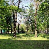 В городском саду :: Татьяна Пальчикова