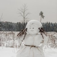 Снеговик. :: Владимир Лазарев