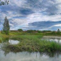 Старый пруд :: Евгений Кривошеев