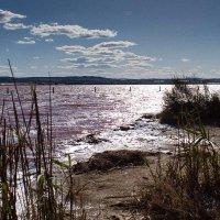 Розовое озеро Салинас. Испания :: Людмила Кашкина