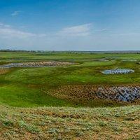 Панорамма :: ирина лузгина