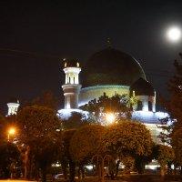 В лунном свете :: Сергей Беляев