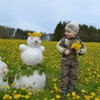 Снеговик в одуванчиках. :: Елена Салтыкова(Прохорова)