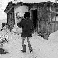 Нам мороз не страшен... :: Светлана Рябова-Шатунова
