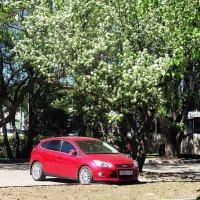 Весна в городе :: Лариса
