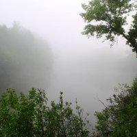 Туманное майское утро :: Валерий Хинаки