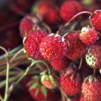 Сладка ягода :: ZNatasha -