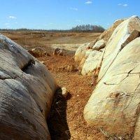 Среди камней :: Нэля Лысенко