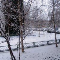 Лета не будет... :( 18.05.18 :: Наталья NataliNkaC Смирнова