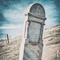 Заброшенное кладбище :: Анна Аринова