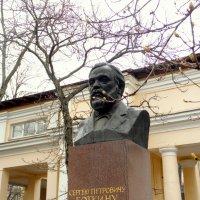 Памятник Сергею Петровичу Боткину на территории больницы его имени. :: Елена