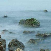 На берегу моря :: Valery Remezau