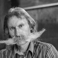 Удивительные усы :: Александр Лиховцов