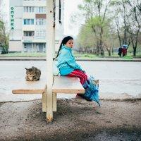 В ожидании :: Александр Чупин