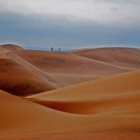 Пустыня Намиб. Намибиа. :: Jakob Gardok