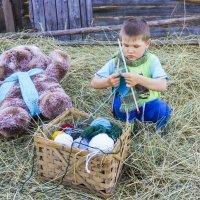 Макару нравится вязание! :: Ирина Антоновна