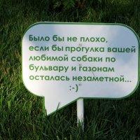 Отчаянный призыв :: Татьяна Смоляниченко