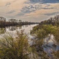 Река Клязьма :: Сергей Цветков