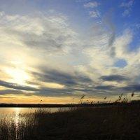 Расплескался закат в синеве... :: Нэля Лысенко