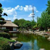 Японский сад :: Nina Yudicheva
