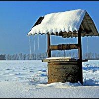 В деревне :: Сергей