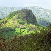 холмы Грузии :: Tanja Gerster