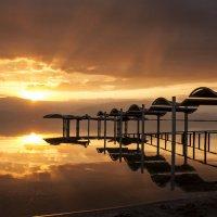 Утро на Мертвом море :: Ольга Саранцева