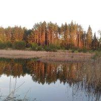 Красоты природы :: Оксана Романова