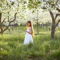 майский сад :: Надежда Городецкая