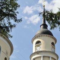 Колокольня Троицкого собора. :: Лариса Вишневская