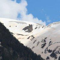 Розовато-жёлтый снег :: Светлана Попова