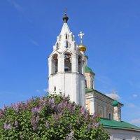 Храм св. Георгия победоносца и сирень. :: Andrew