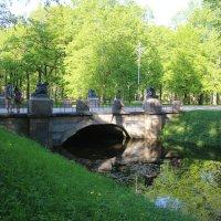 Драконов мост :: Наталья Герасимова