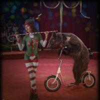 Цирк :: Анастасия сосновская
