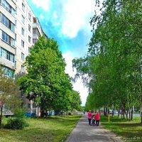 Прогулки по городу (Чебоксары). :: Михаил Николаев