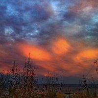мобильное фото :: valeriy g_g