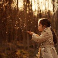 прогулка в лесу :: Anna Fill