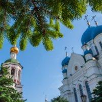 Николо-Перервинский монастырь :: Alexander Petrukhin