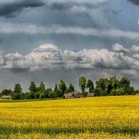 Белорусская деревенька :: Василий Королёв
